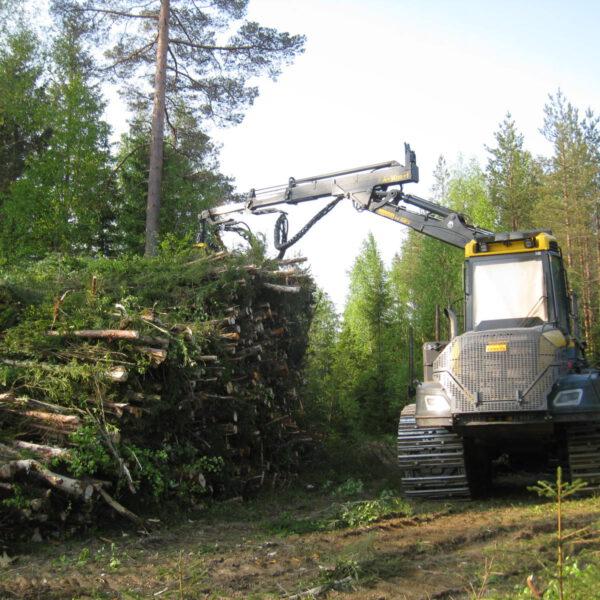 Energiapuusta apua metsäbiotalouden hiussuoniston tukkeumiin